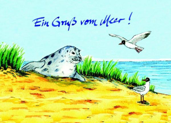 Postkarte Robbe+Möwe, mit Gruß