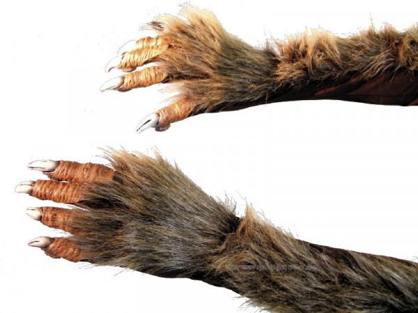 Werwolfhände