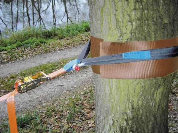 Slackstar® Baumschutz