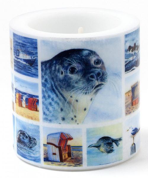 Windlichtkerze Seehunde