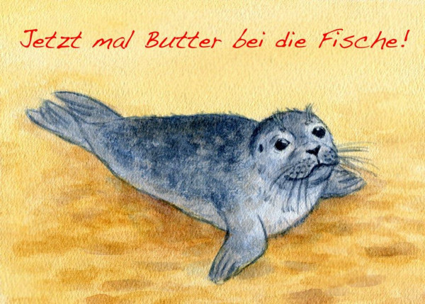 Postkarte A6 Robben, Jetzt mal Butter.