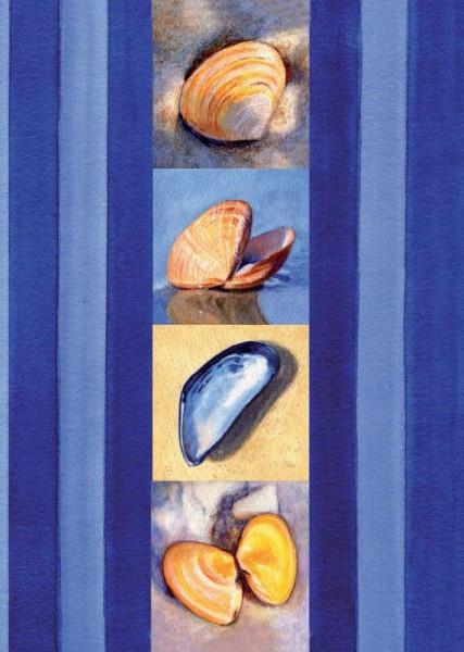 Postkarte A6 Muscheln