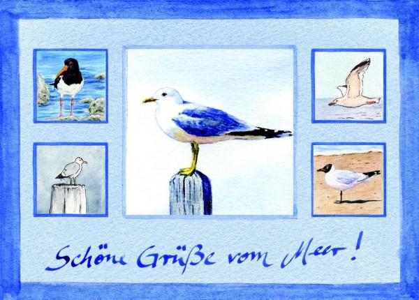 Postkarte Collage Möwen, Pfahlmöwe