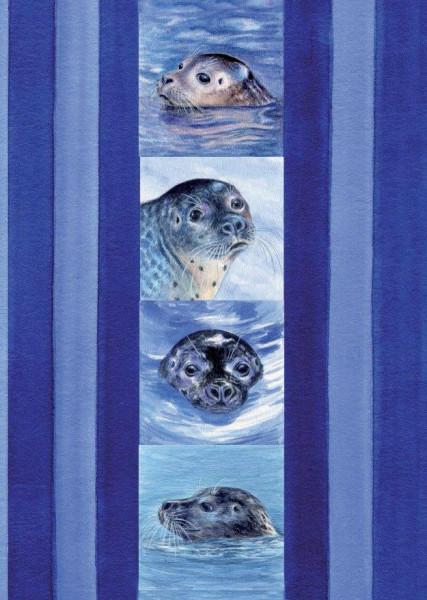 Postkarte A6 Seehundcollage