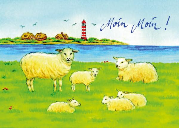 Postkarte Schafe, Moin Moin