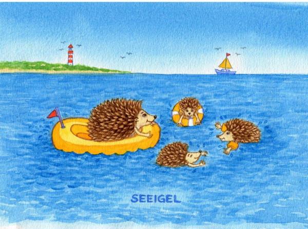Postkarte Küstentiere, Seeigel