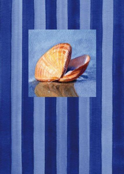 Postkarte A6 Muschel