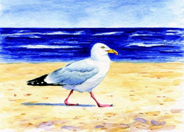 Postkarte Möwe am Strand